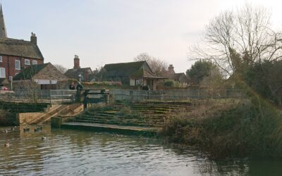Keystone to lead stakeholder and community engagement for £407k ecological project in Godmanchester